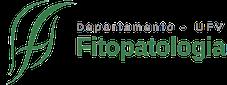 logo-dfp3
