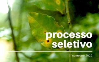 fito - processo seletivo